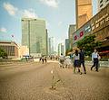 Ocupar las ciudades y llenarlas de vida. (16786388903).jpg
