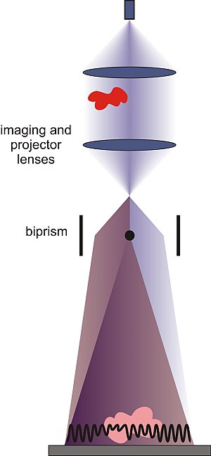 Common-path interferometer - Figure 3. Biprism used in an electron holography system