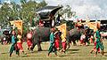 Olifantenfestival Surin Thailand 007.jpg