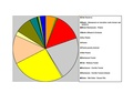 Olmsted Co Pie Chart No Text Version.pdf