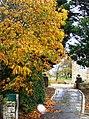 Orchardcroft - geograph.org.uk - 606361.jpg
