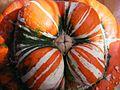 Ornamental-Pumpkin 15362-300x225 (4810844731).jpg