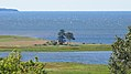 Orwell Cove Rd, Orwell Cove (470952) (9450600930).jpg