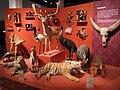 Oslo Zoological Museum - IMG 9062.jpg