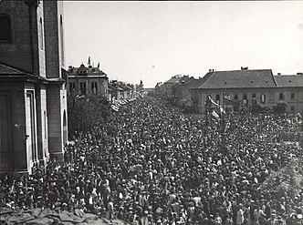 Otkrivanje spomenika Žarku Zrenjaninu (2)