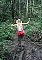 Overbridge rain forest (2720231390).jpg