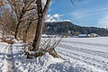 Pörtschach Winklern Quellweg Blick zum Zocklwirt vulgo Rumasch 14012021 0372.jpg