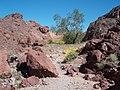 Painted desert trail , imperial national wildlife refuge,,,2.jpg