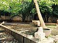 Palazzo Fortunato vista giardino.jpg