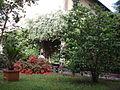 Palazzo massoni, giardino 03.JPG