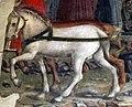 Palazzo schifanoia, salone dei mesi, 05 maggio (f. del cossa e aiuti), trionfo di apollo 02 cavalli 2.jpg
