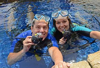 Palma Aquarium - Underwater