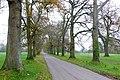 Pamphill Green, Dorset - geograph.org.uk - 1061077.jpg