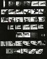 Paolo Monti - Servizio fotografico (Verona, 1972) - BEIC 6334949.jpg