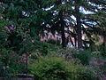 Parco casa Barbano.JPG