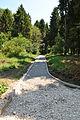 Park-Zdorovia-remont-15070299.jpg
