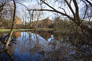 Park Road Pond - Image: Park Road Pond 6