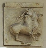 Parthenon south metope 29 - casting in Pushkin museum.jpg
