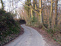 Partridges Lane - geograph.org.uk - 1214370.jpg