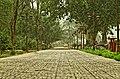 Pathway to Hiran Minar by Damn Cruze.jpg