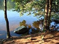 Pawtuckaway campsite.JPG