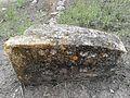 Pedra gran tallada de Kuntur Wasi.jpg