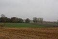 Perthes-en-Gatinais - Hameau du Petit-Moulin - 2012-11-14 - IMG 8211.jpg