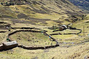 Human rights in Peru - A rural home in the highlands of Peru.
