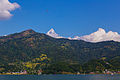 Phewa lake in Pokhara (16093216252).jpg