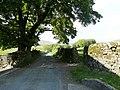 Philpin Lane - geograph.org.uk - 1382411.jpg