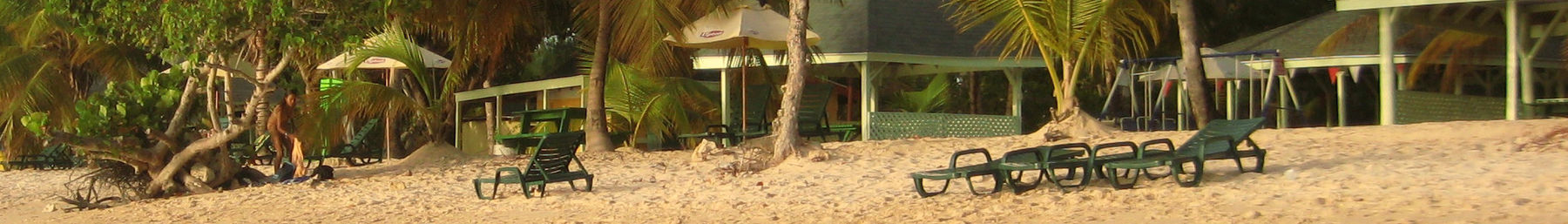 Pigeon Point (Tobago) banner Beach.jpg