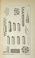 """Plate from Dutrochet, """"Recherches Anatomiques,"""" 1824 Wellcome L0033031.jpg"""