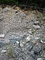 Pleistocene glacial till (Straight Lake West roadcut, north of Temagami, Ontario, Canada) 2 (46899376365).jpg