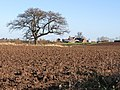 Ploughed field near Corse House Farm - geograph.org.uk - 679555.jpg