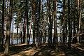 Pole namiotowe, jezioro Głęboczek - panoramio (4).jpg