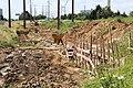 Pose de canalisation aux Ulis le 29 juillet 2013 - 2.jpg