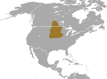 Prairie Shrew area.png