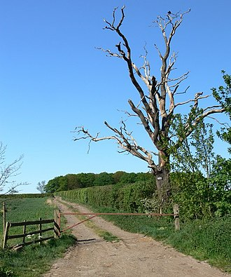 Lubbesthorpe - Private farm track off the Lubbesthorpe Bridle Road