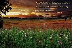 Psalm 8 Wikipedia