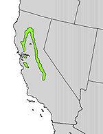 Ptelea crenulata range map.jpg
