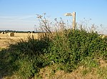 File:Public Footpath sign - geograph.org.uk - 521628.jpg