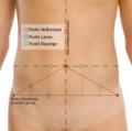 Punkty orientacyjne - brzuch.png