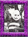 PurpleFrame-HenryHornet.jpg