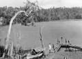 Queensland State Archives 872 Lake Eacham Yungaburra District North Queensland October 1927.png