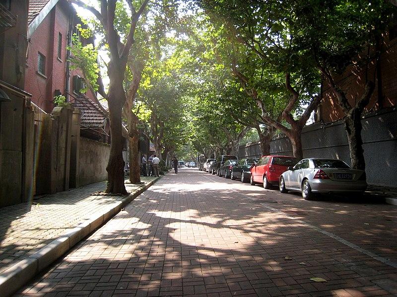 Quiet Streets Shanghai.jpg
