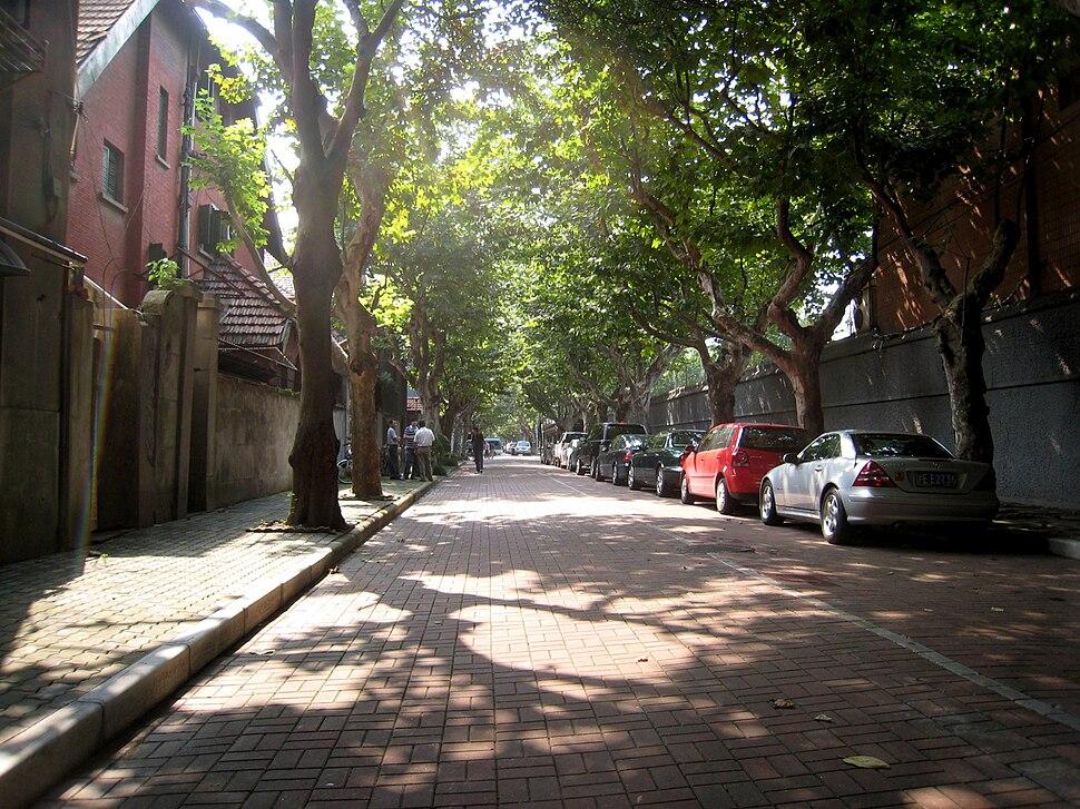 Quiet Streets Shanghai