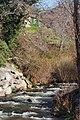 Río Corneja. Tramo medio a su paso por La Ribera.jpg