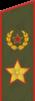 Погон генерала армии