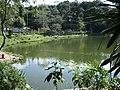 RANCHÃO DO PEIXE - panoramio (6).jpg
