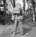 Rear view of Fusilier Tom Payne, 11 Platoon, 'B' Company, 6th Battalion, Royal Welsh Fusiliers, Normandy, 12 August 1944. B9006.jpg